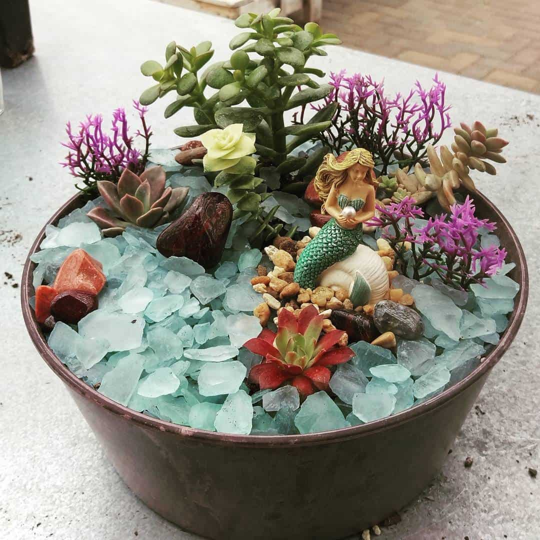 Succulent Mermaid Garden