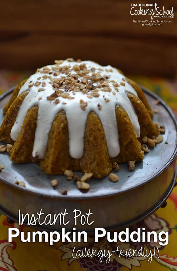 Instant Pot Pumpkin Pudding
