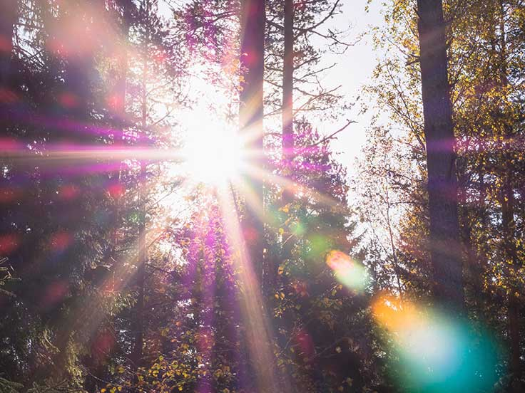 The amount of sunlight you get affects how you sleep and the amount of sleep you get affects your mind and body, including your ability to cope with stress.