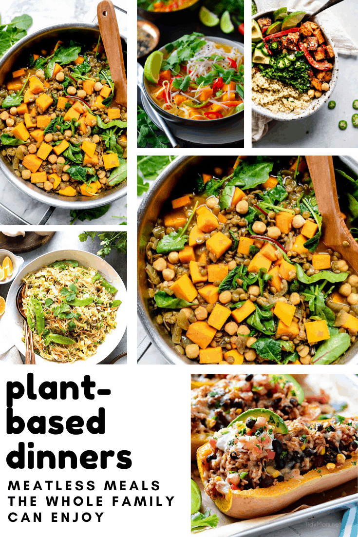 Delicious plant-based dinners that aren't salads! Everything from burgers to burritos so your whole family can still eat together