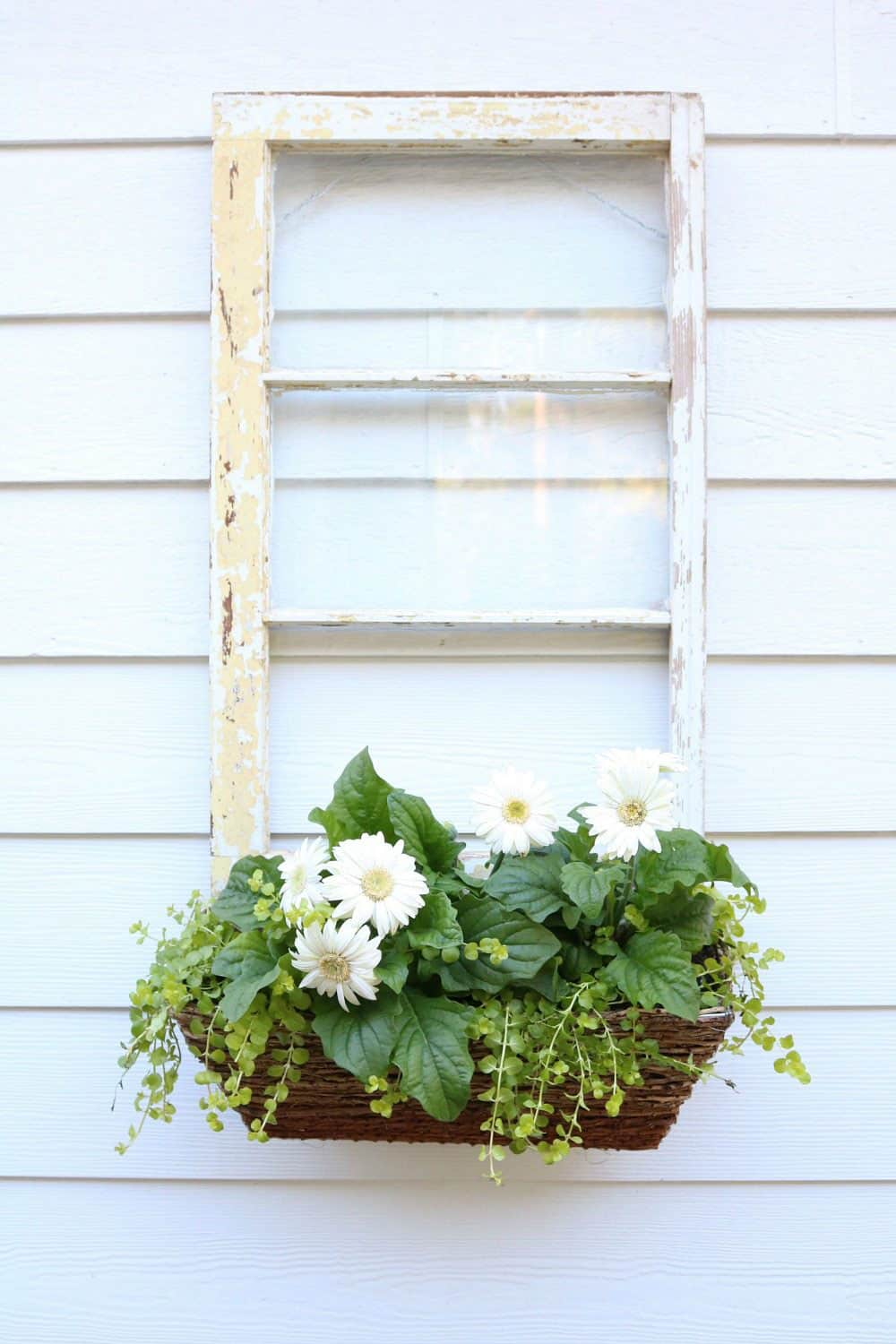 Repurposed Window – Window Box