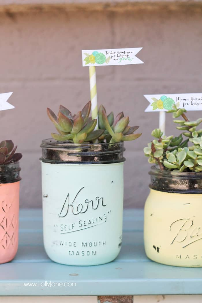 Turn your Mason jars into succulent planters
