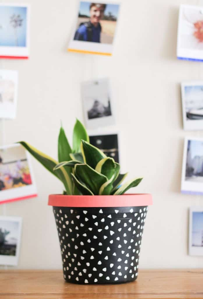 Make a DIY painted planter