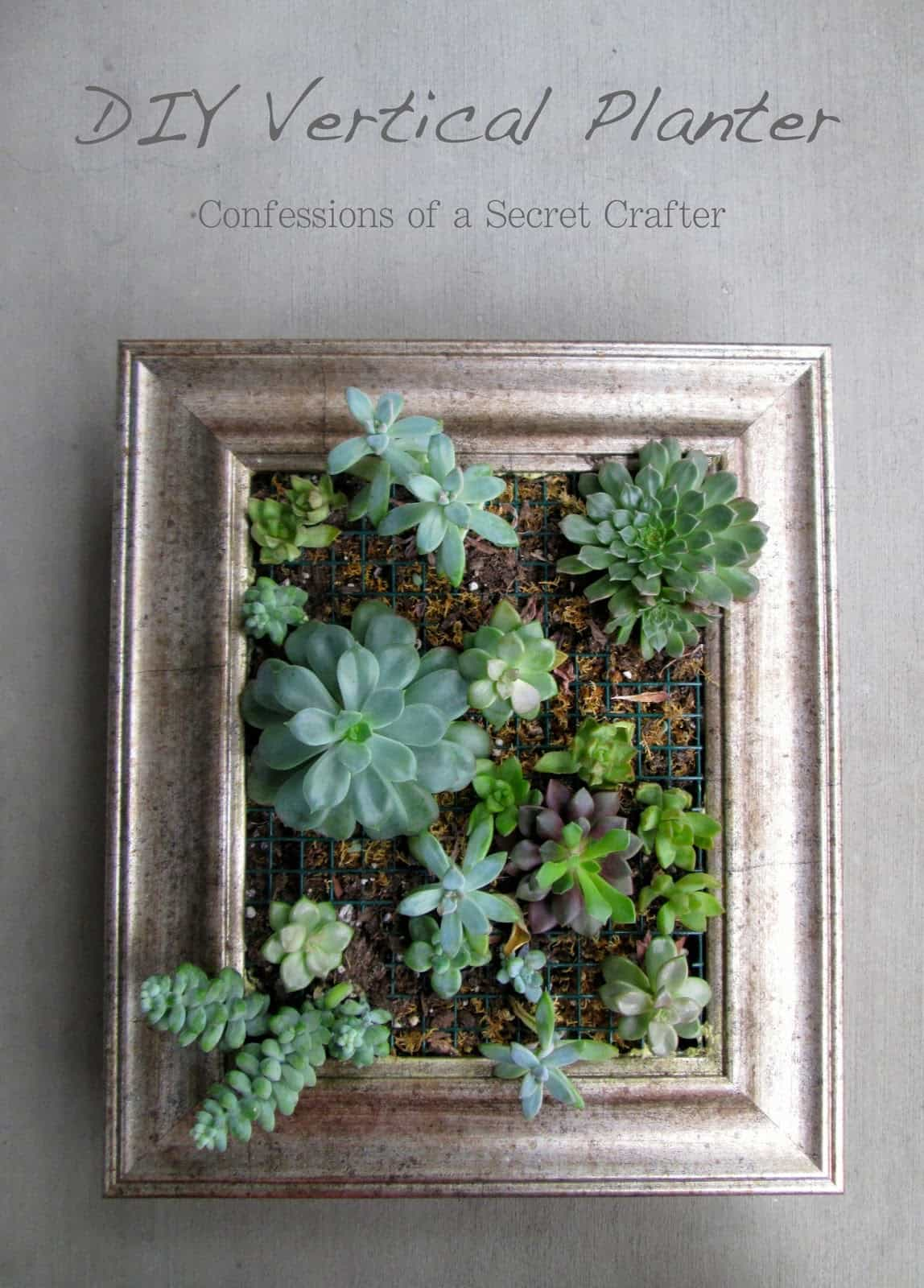 Repurpose a picture frame into a DIY vertical planter