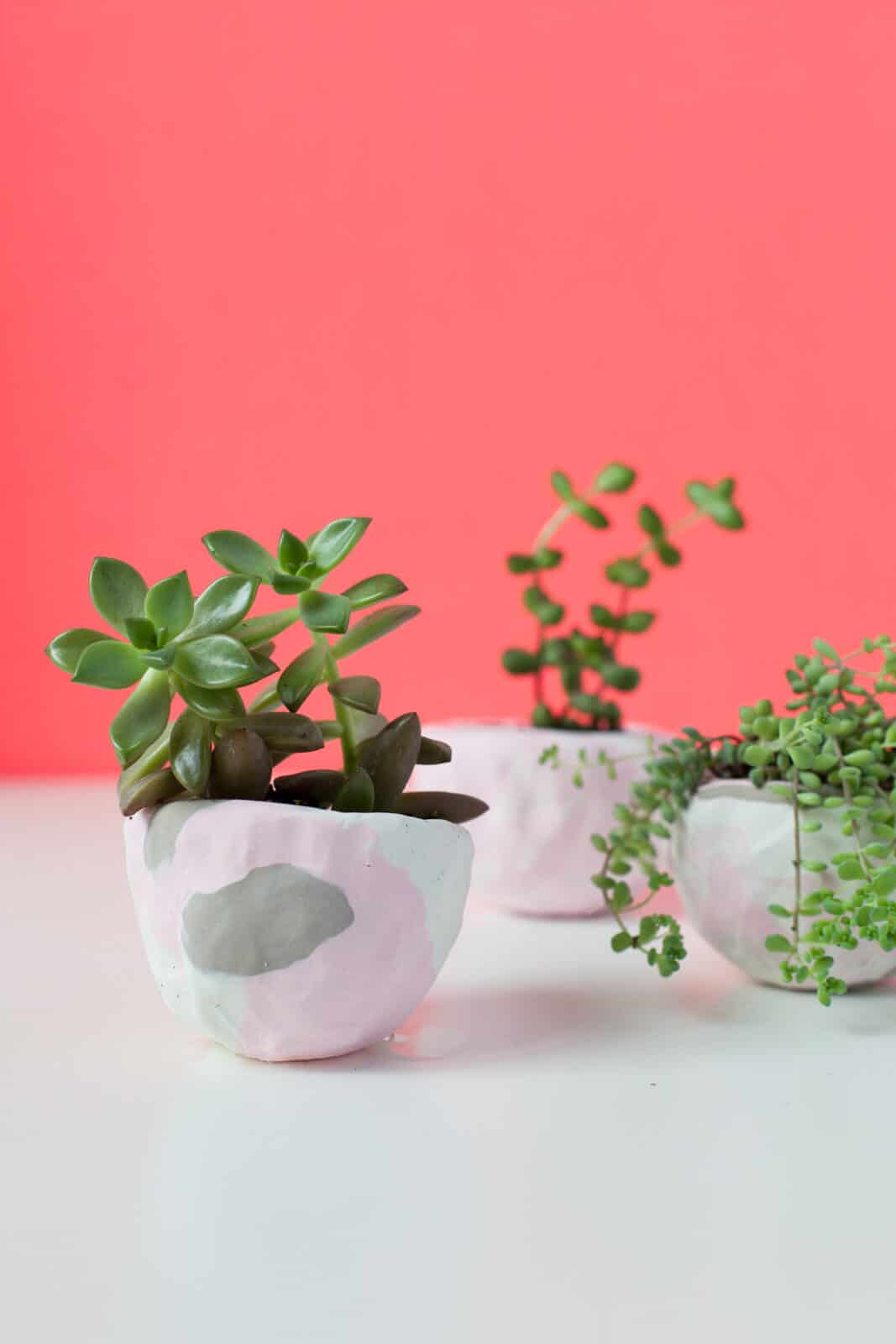 Make your own marbled clay succulent pots
