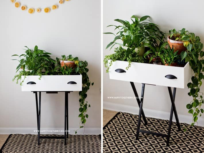 Turn your old drawer into a planter